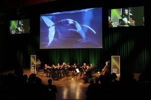 """<div class=""""bildtext_en""""><span class=""""bildunterschrift_hervorgehoben"""">2</span>The successful opening event was accompanied by classical music by the Norwegian composer Edvard Grieg</div>"""