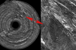 """<div class=""""bildtext_en"""">Orthophoto of the full TBM face as the result of photogrammetric evaluation (left) with details (right)</div>"""