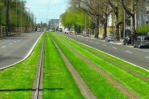 """<div class=""""bildunterschrift_en"""">Green track </div>"""
