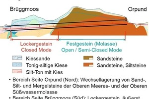 The Längholz Tunnel for the Biel east link autobahn bypass: geology
